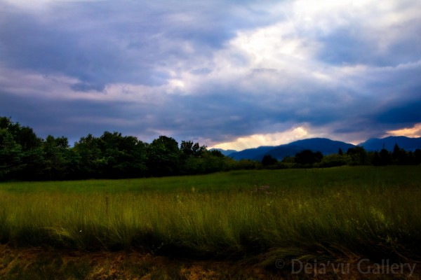 A view of the beautiful countryside on the way to the hotel. Slovenia, June 2013 © Deja'vu Gallery