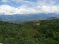 The area here is so green, compared to Northern Italy.