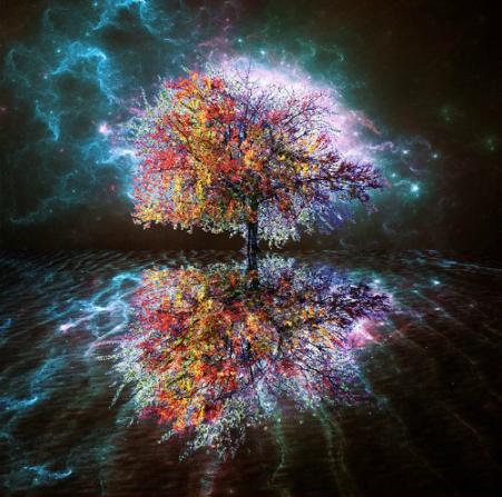 Cosmic-Tree