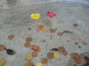 offering pool cerchio