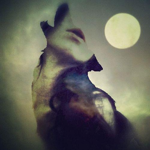 let your soul howl