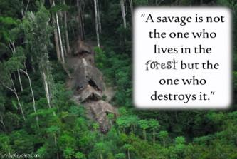 savage destroys nature