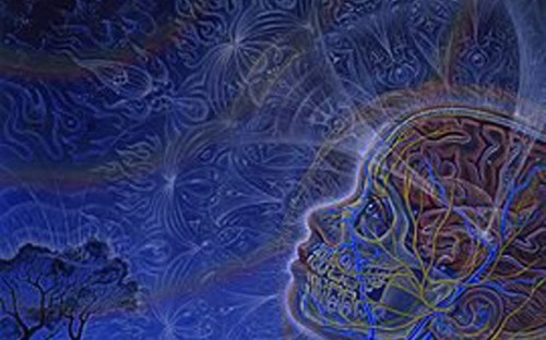 Alex Grey, space beings, extraterrestrial life, starseed