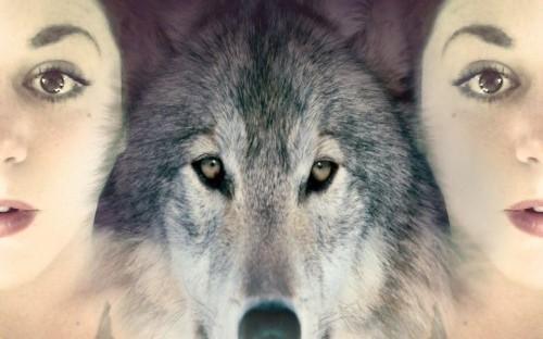 Wild woman, wolf medicine