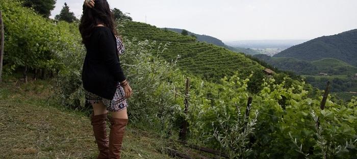 akosmopolite traveling through a vineyard in norhern italy