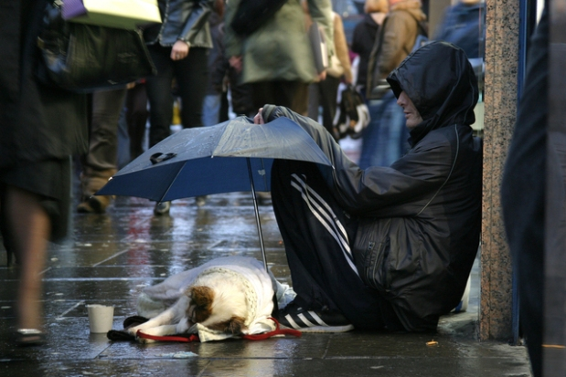 homeless on the streets raining rainy day veteran man with dog no home charity needing help give help donate helping hand