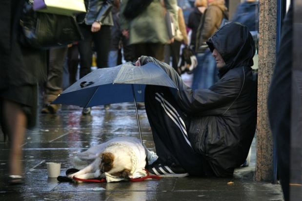 homeless on the streets raining rainy day veteran man with dog no home charity needing help give help donate helping hand