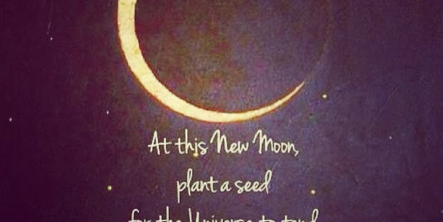 New moon planting seeds intentions manifestation